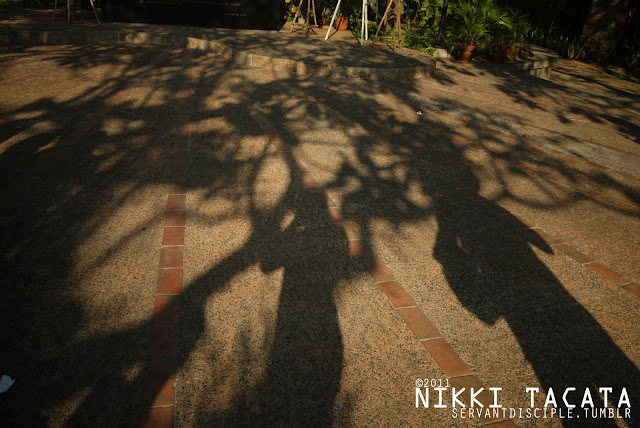Some random guy's shadow
