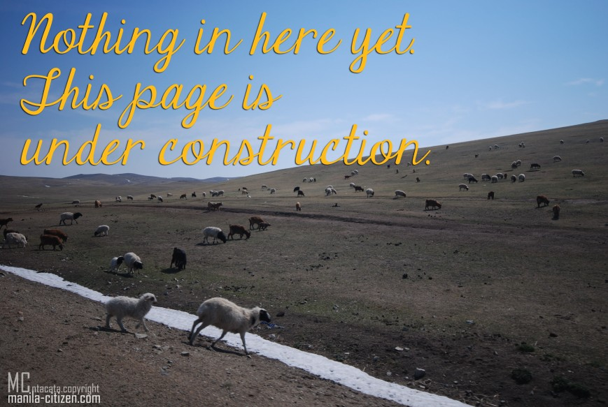 mongolia pasture